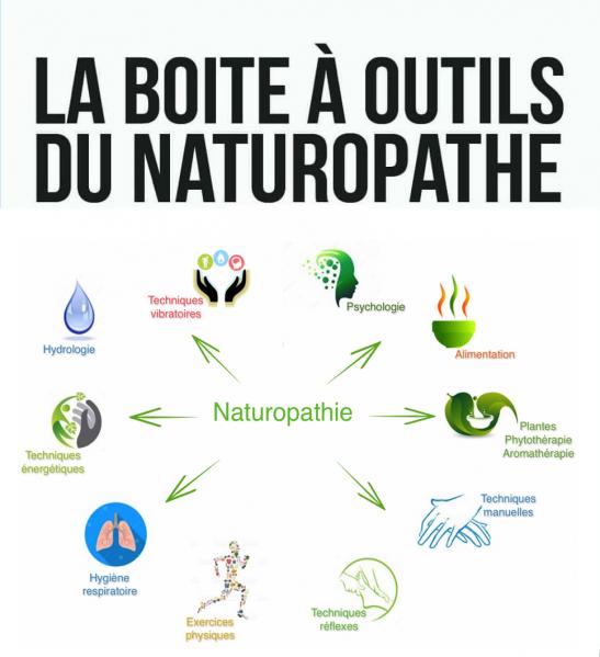 La boite a outils du naturopathe